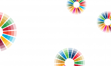 Performance Culture with the SDGs